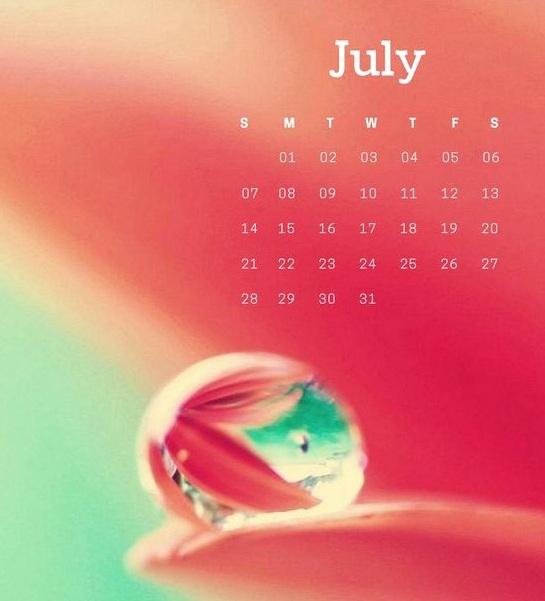 Cute July Calendar 2019
