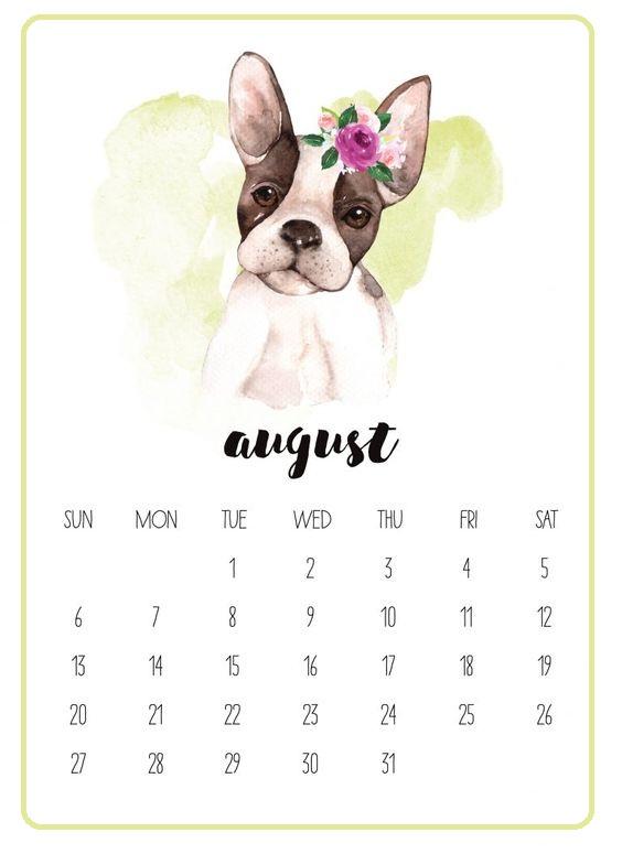 Cute Printable August 2019 Calendar