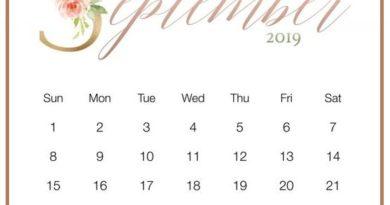 Cute September 2019 Blank Calendar